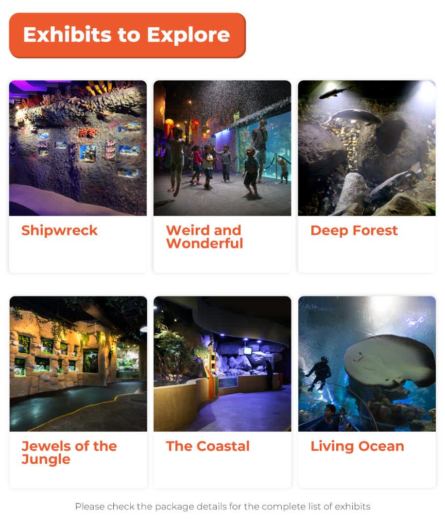 exhibits to explore in aquaria klcc