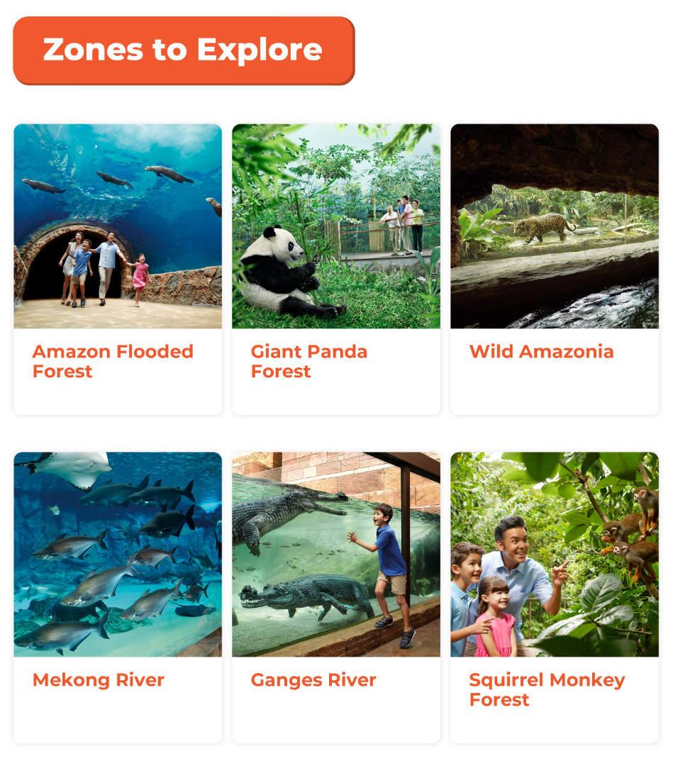 a list of zones to explore singapore river safari