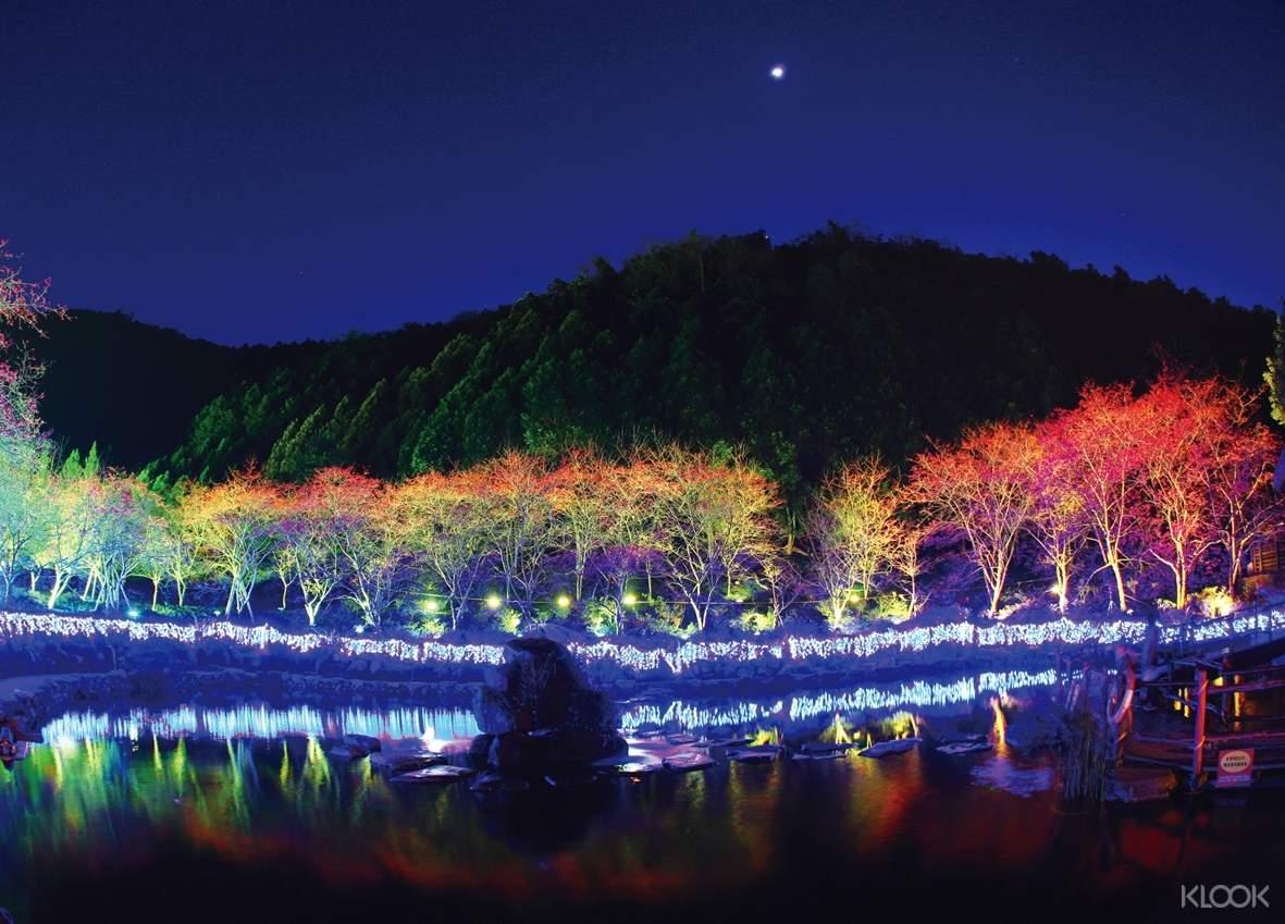 黑夜降臨,櫻花園所有幸福花燈都亮了起來,鏡花水月的湖面、璀璨靜默的櫻花彩虹,點出幸福光芒