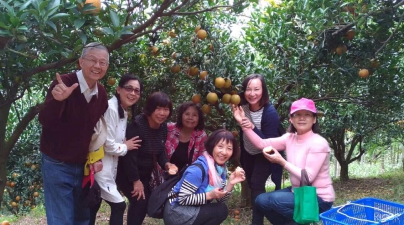 沒帶上親朋好友前往,水果採摘體驗就不算完整!