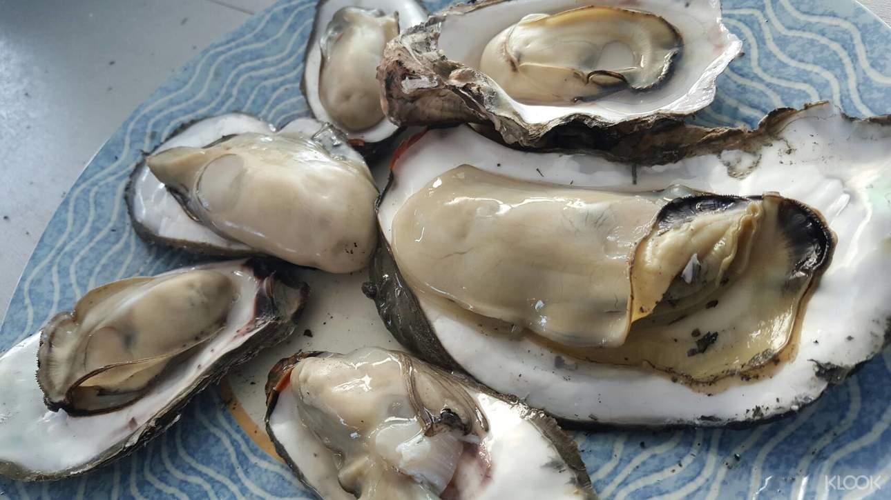 來到台南將軍漁港,享受牡蠣吃到飽