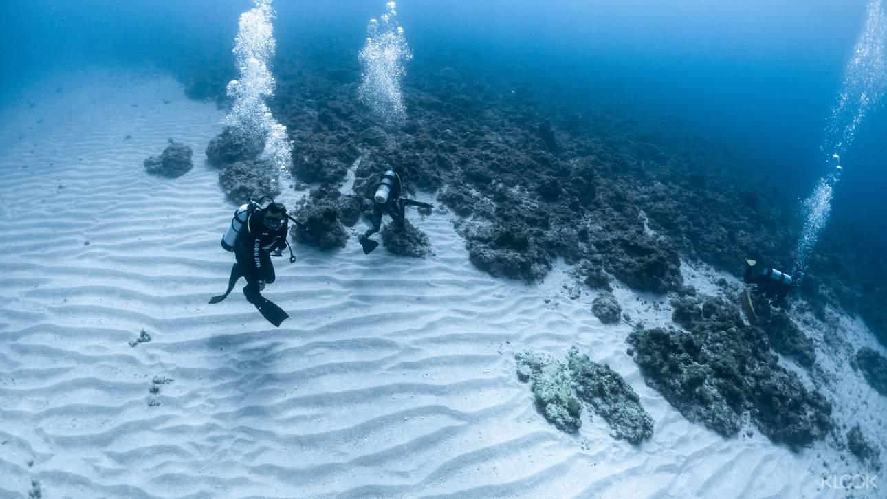 探索小琉球繽紛多姿的珊瑚礁生態,見證水中世界的奧妙