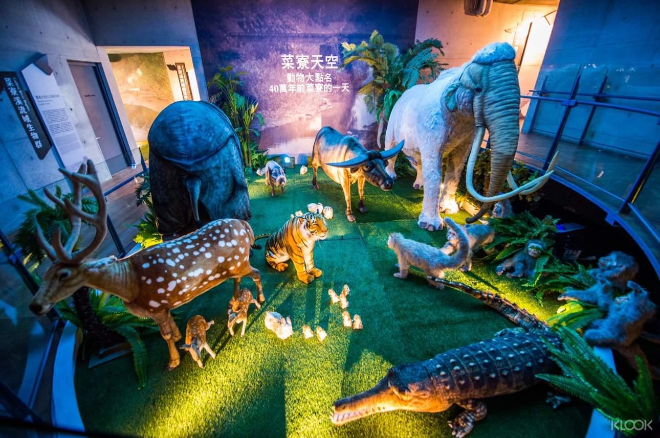 呈現「化石原鄉」獨特的自然與人文面貌,走入台灣化石的珍貴寶庫,重新閱讀台灣靈長類的現今與過去,以及鱷魚、梅花鹿、水牛、豪豬、老虎和黑熊等台灣出土化石的特色與故事