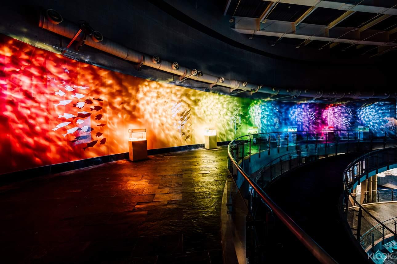 於今年全新展開的「海洋本色」活動,集結七種不同色系鮮豔亮麗海洋生物,搭配長達34公尺波光粼粼的繽紛主展區「色水廊道」,讓來訪的遊客可以認識不同海洋生物的美麗姿態