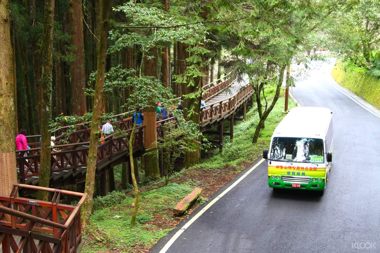 搭乘阿里山電動遊園車,無碳漫遊絕美山林