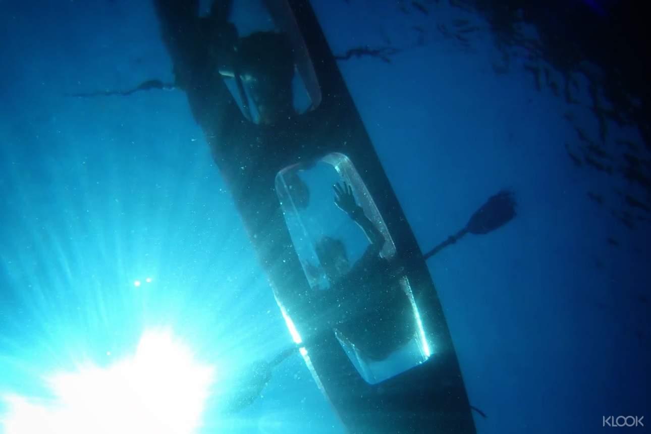體驗透明的獨木舟,邊航行邊觀察海底生態