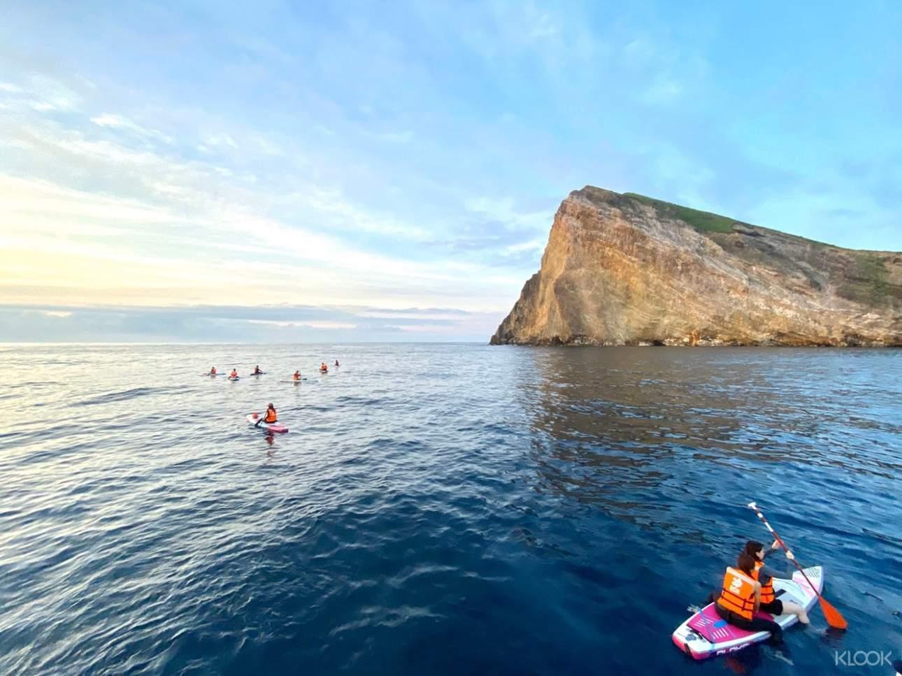 行程提供專業介紹,帶你了解台灣豐富的海洋資源