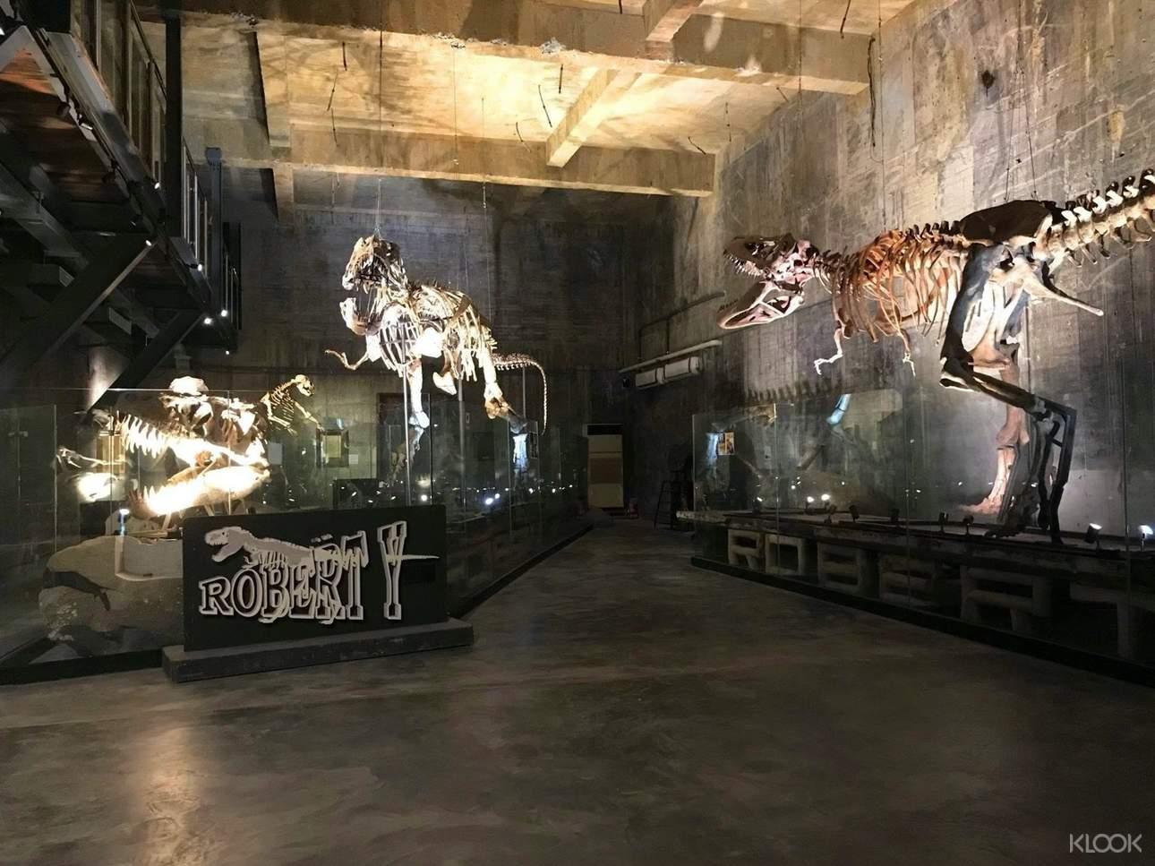 全球唯一收藏白堊紀暴龍化石,恐龍迷不可錯過!