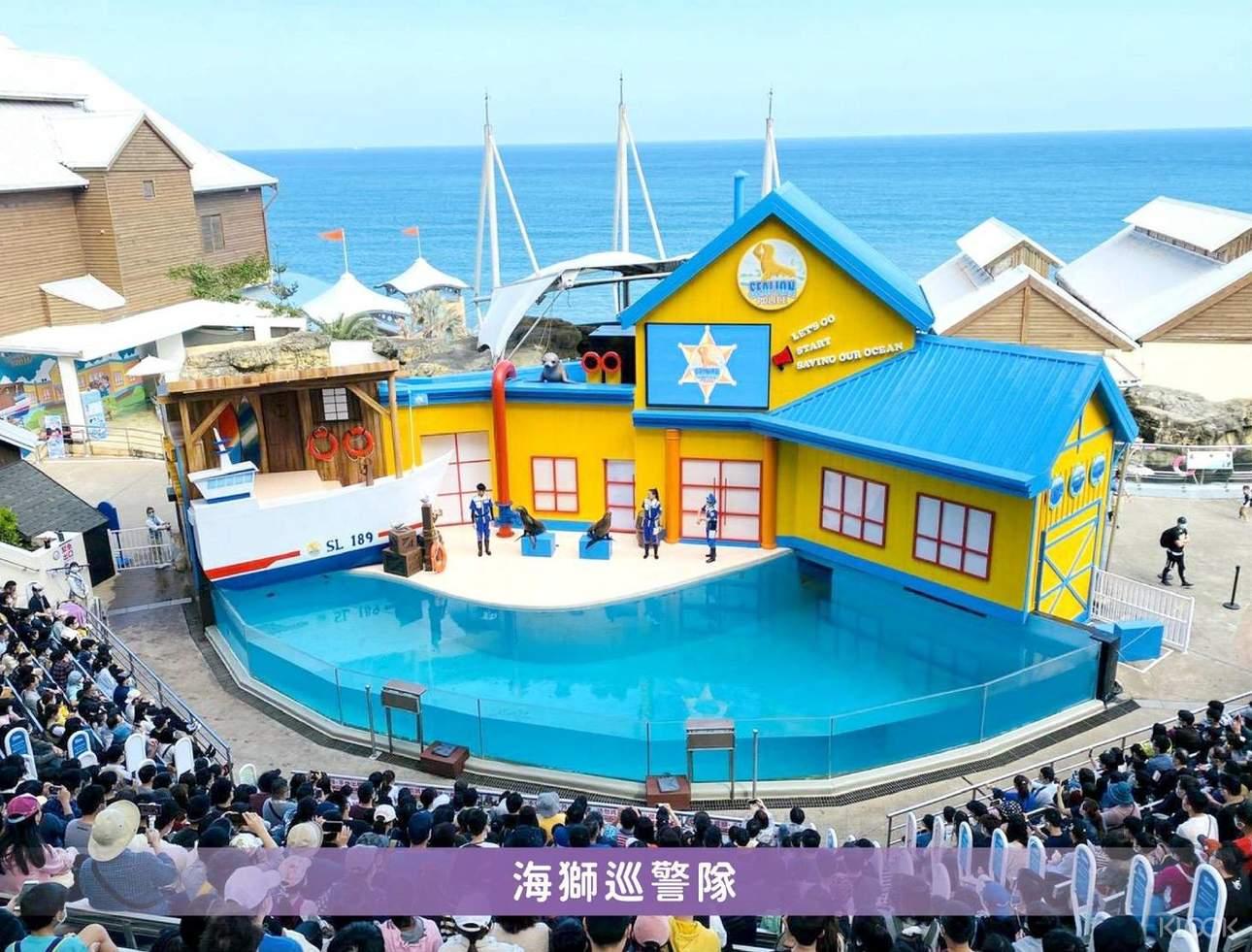 海獅精彩逗趣的表演,讓我們一同共襄盛舉!