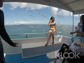 現折TWD200起|澎湖|東海跳島之旅:珊瑚礁釣魚浮潛&餵海鷗&海上獨木舟