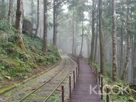 宜蘭太平山國家森林遊樂區一日遊