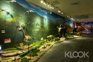 台南|樹谷生活科學館門票 / 恐龍遊樂券