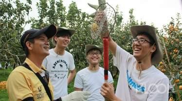台灣水果採摘體驗