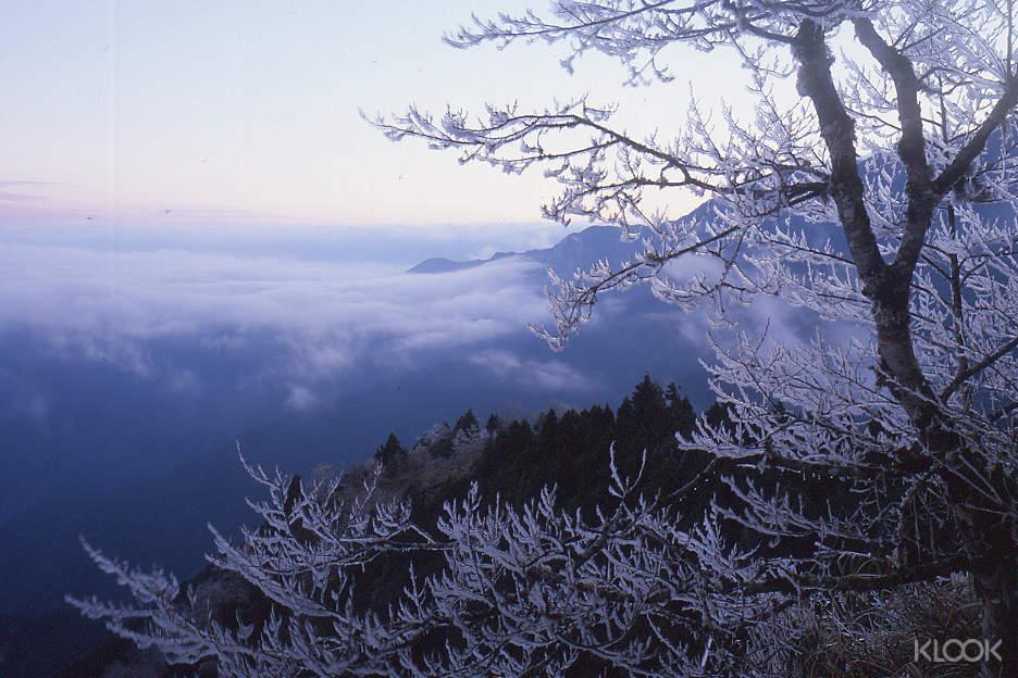 蹦蹦車、溫泉、高山湖泊、巨木森林與國寶,鋪成太平山國家森林遊樂區超過百年歷史的綿長軌跡